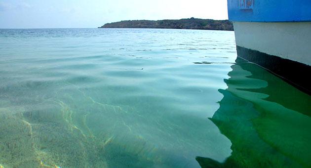 صورة جزر فرسان