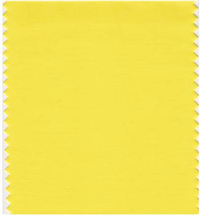 زهرة الربيع الصفراء