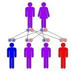 صورة الأمراض الوراثية الشائعة
