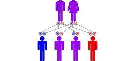 الأمراض الوراثية الشائعة وتوزعها الجغرافي والأعراض الناتجة عنها